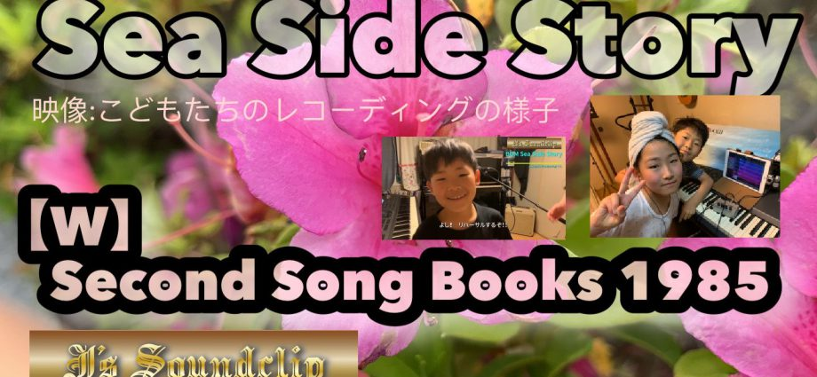 今から35年前の曲。 インストアレンジで紹介。 「Sea Side Story」