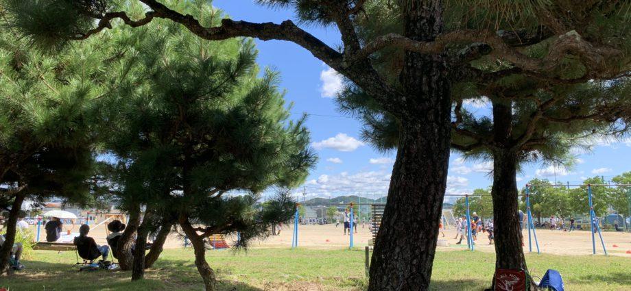 なかなかのスポーツ日和になっている岡崎市。 2020-09-29