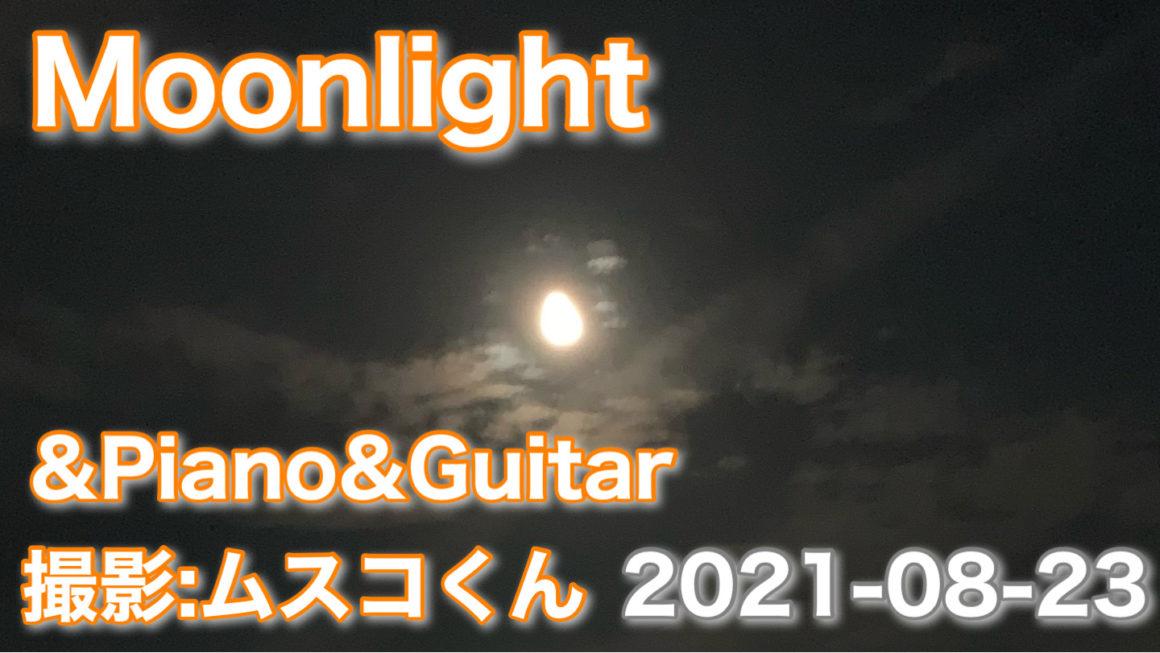2021-08-23|月夜