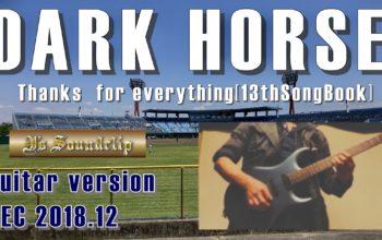 DARK HORSE (Guitar version) |さっきのBGM【DARK HORSE】でギター持って遊んでた動画発見!